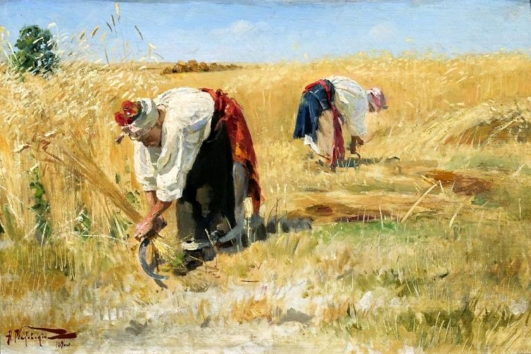 Makovski_Harvest