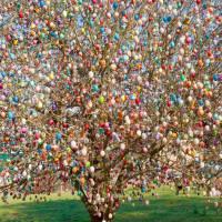 L'albero di Pasqua una tradizione venuta dal nord Europa